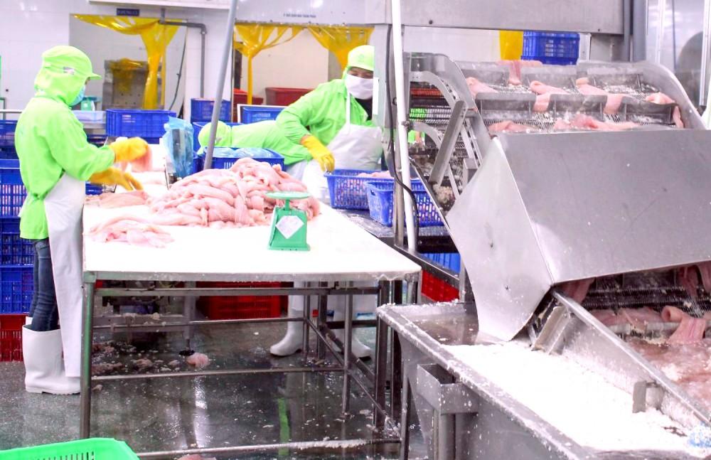 Chế biến thủy sản xuất khẩu tại một doanh nghiệp ở Khu công nghiệp Trà Nóc 2, quận Ô Môn, TP Cần Thơ.