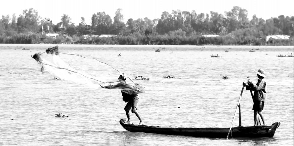 Chài cá ở Nam Bộ.