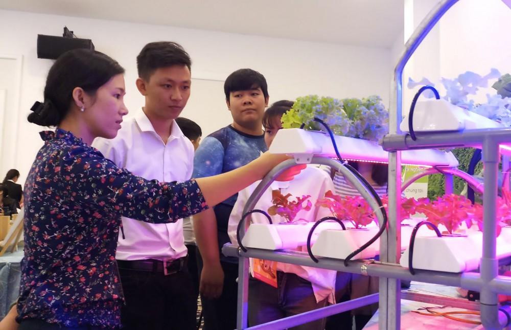 Mô hình trồng rau theo phương pháp thủy canh, đạt chuẩn VietGAP của Công ty TNHH Đầu tư và Phát triển Minh Hòa.