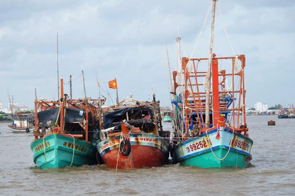 Các tàu đánh cá khi vào sông, phải neo đậu đúng khu vực được hướng dẫn của ngành chức năng để thực hiện phòng, chống dịch COVID-19.