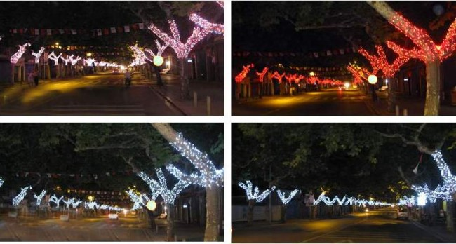 Trang trí cây xanh dọc tuyến đường 30 Tháng 4 và Hòa Bình, điểm xuyết cho Đường đèn