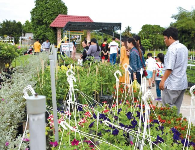 Đường hoa Sa Nhiên – Cai Dao với độ dài khoảng 2,3km là nơi tập trung đông nhà trồng hoa, thuận tiện cho khách tham quan.Từ Tết Dương lịch, nơi đây đã thu hút đông du khách về tham quan. Một số nông dân đầu tư cơ sở vật chất, biến vườn hoa làm du lịch. Năm 2019, một số điểm bắt đầu thu vé người lớn 10.000 đồng/lượt và trẻ em 5.000 đồng/lượt.