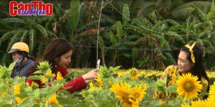 Tết ở làng nghề miền Tây <br> Tập 4: Ngắm hoa giữa lòng phố thị