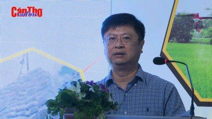 Có 150 thị trường, gạo Việt vẫn phát triển thiếu bền vững