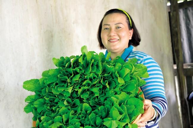 Tuy giá thành rau thủy canh đắt hơn, nhưng chất lượng rau được kiểm soát, đảm bảo an toàn vệ sinh thực phẩm nên được người tiêu dùng ưa chuộng, vì thế đầu ra rất ổn định.