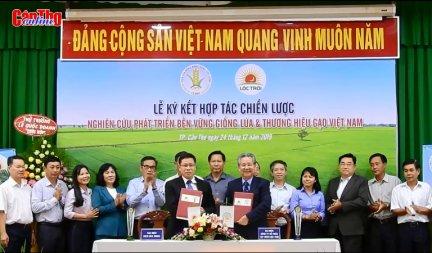 Hợp tác phát triển bền vững giống lúa và thương hiệu gạo Việt Nam