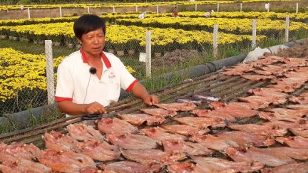 Xóm nghề khô cá lóc vào Tết