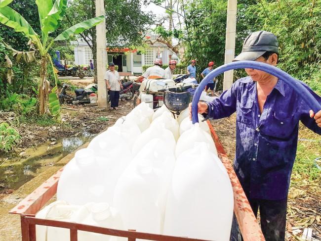 Nông dân huyện Cai Lậy (tỉnh Tiền Giang) lấy nước ngọt tại các con sông lớn để tưới cho vườn cây ăn trái ở khu vực nội đồng, kênh rạch bị khô nước.