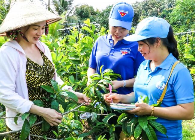 Nhiều hoạt động chăm lo, giúp đỡ thanh niên khởi nghiệp cũng được các cấp bộ Đoàn triển khai. Trong ảnh: Quận đoàn Thốt Nốt khảo sát mô hình sản xuất cây giống kết hợp du lịch của chị Ngô Thị Huê, phường Tân Lộc.