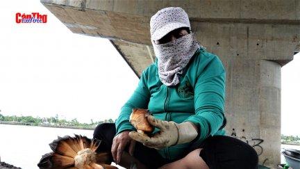 30 năm mưu sinh bằng nghề chẻ dừa nước