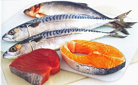 Ăn cá béo 2 lần/tuần giúp bảo toàn sức khỏe hệ miễn dịch - Báo Cần Thơ Online