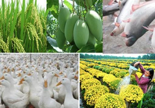Đồng Tháp kêu gọi đầu tư mạnh cho nông nghiệp