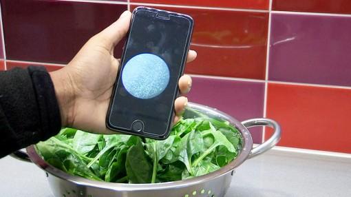 Công cụ phát hiện nhanh vi khuẩn trong nước và thực phẩm