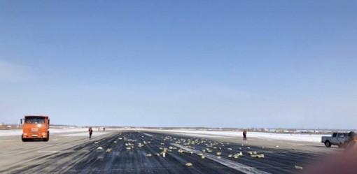 Nga: Cửa máy bay hỏng, vàng thỏi rơi la liệt trên đường băng