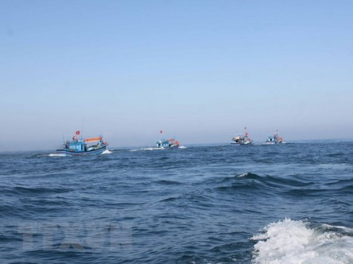 China's fishing ban in Vietnamese waters valueless: MARD