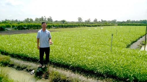Hỗ trợ nông dân nâng cao hiệu quả sản xuất