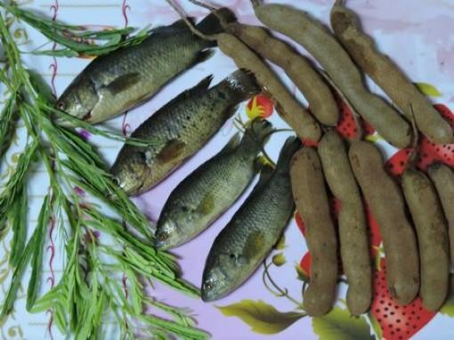 Đong đầy niềm thương món cá rô đồng