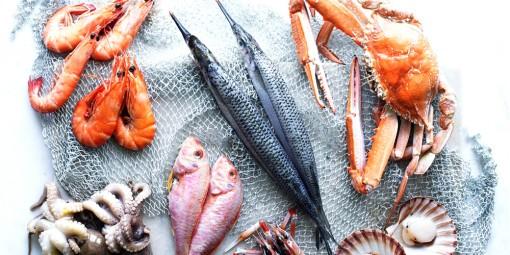 Ăn hải sản giúp người già khỏe mạnh
