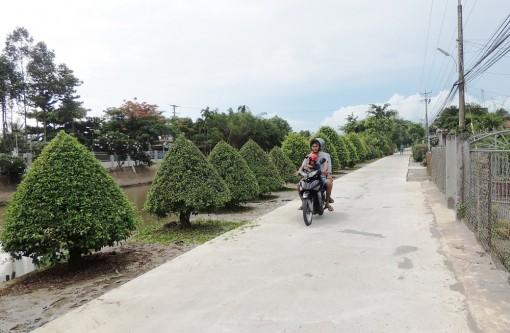 Kỳ vọng về huyện nông thôn mới Vĩnh Thạnh