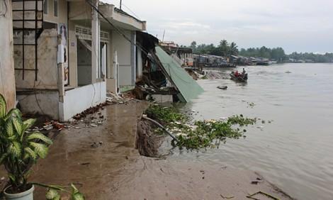 Để phát triển bền vững Đồng bằng sông Cửu Long