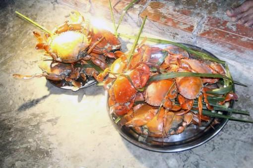 Trải nghiệm thú vị ẩm thực biển Cồn Bửng