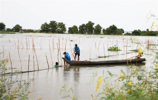 Hướng đi cho du lịch nông nghiệp, sinh thái ở ĐBSCL - Bài cuối: Nhiều giải pháp tháo gỡ bất cập