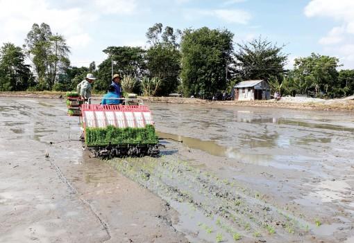 Nâng cao giá trị sản xuất nông nghiệp