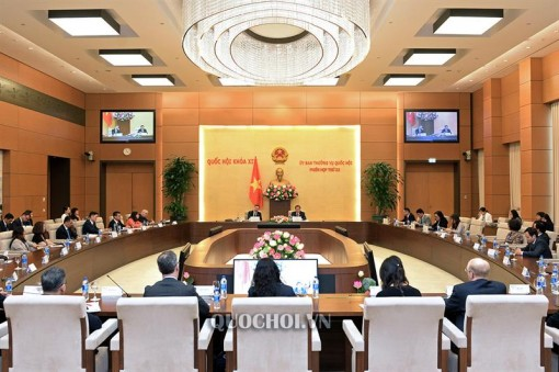 US-ASEAN Business Council bridges US firms and Vietnam: official