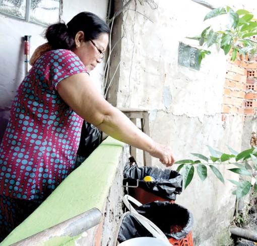 Phân loại rác, bảo vệ môi trường