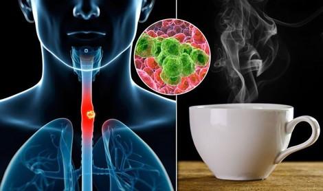 Uống trà quá nóng dễ mắc  ung thư thực quản