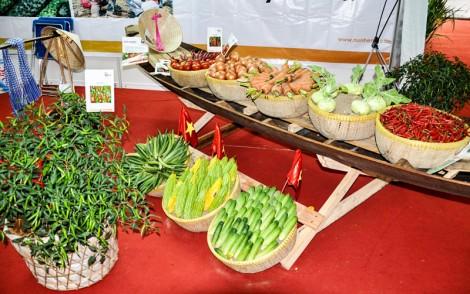 Hiệu ứng tốt từ  mô hình chuỗi cung ứng thực phẩm an toàn