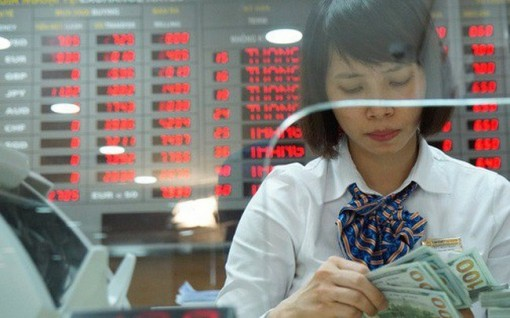 Central bank buys 8.35 billion USD to build foreign reserves
