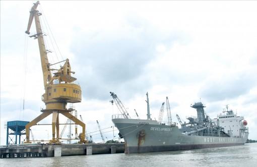 Cảng Hậu Giang đón tàu chuyên dụng  DEVELOPMENT 10.000DWT cập bến