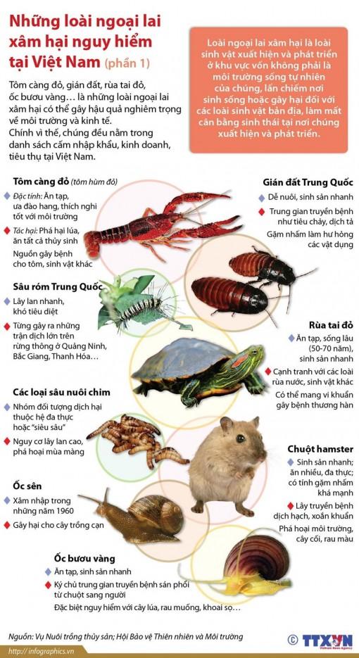 Những loài động vật ngoại lai xâm hại nguy hiểm tại Việt Nam