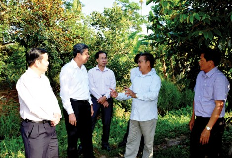 Phong Điền duy trì tốc độ phát triển kinh tế -xã hội