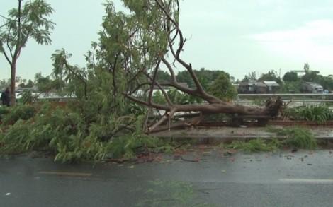 Hơn 200 căn nhà ở Đồng Tháp bị thiệt hại do dông, lốc