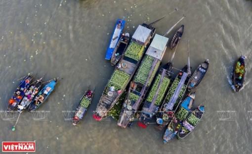 HCM City, Mekong Delta boost tourism cooperation