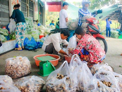 Sản xuất, tiêu dùng các sản phẩm nấm trồng ở địa phương