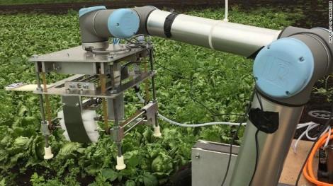 Robot thu hoạch rau và trái cây mềm