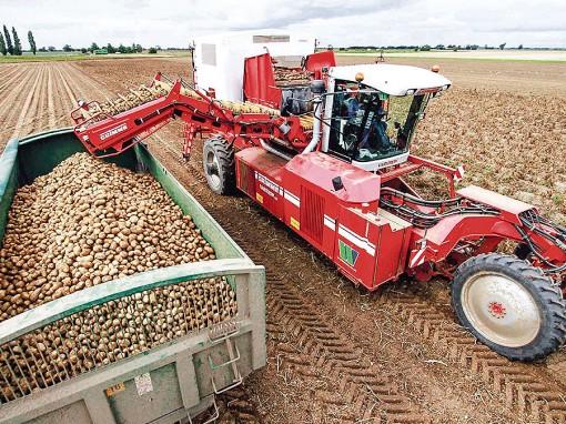 Thế giới phải đa dạng hóa sản xuất thực phẩm