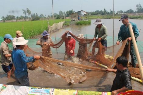 Nỗ lực tái tạo nguồn lợi thủy sản