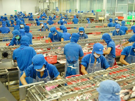 Giá trị cốt lõi của Tập đoàn Sao Mai