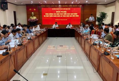 Nghiêm cấm xuất khẩu heo tiểu ngạch sang Trung Quốc