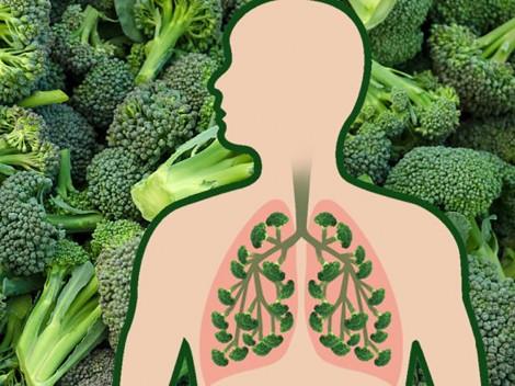 Ăn gì để giảm tác hại của ô nhiễm không khí với sức khỏe