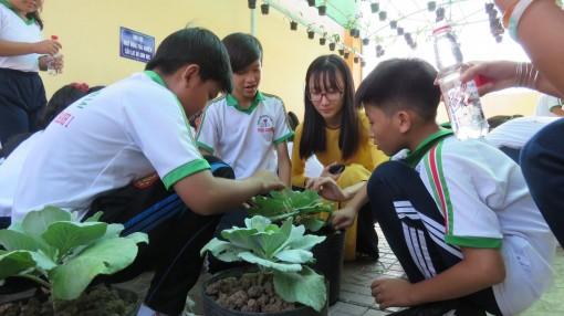 10 năm phát triển của giáo dục Thới Lai