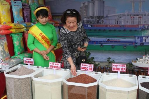 """Nâng cao chất lượng lúa gạo, phát triển mô hình """"cánh đồng lớn"""""""