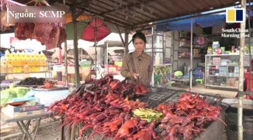 Thịt chuột nướng của người Campuchia