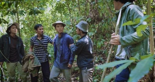 """""""Rừng thiêng"""" và cảnh báo về nạn phá rừng"""