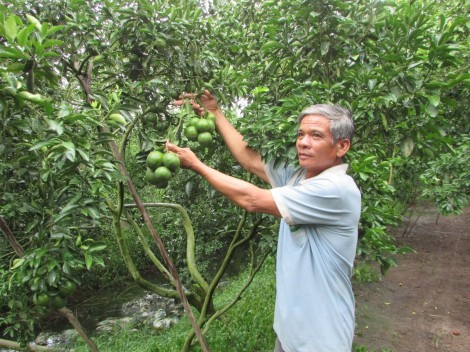 Bảo vệ sản xuất mùa khô hạn