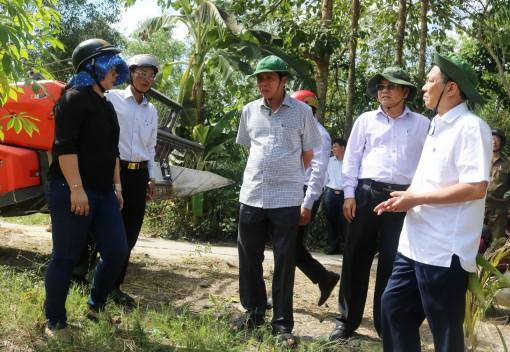 Lãnh đạo TP Cần Thơ kiểm tra phòng chống hạn mặn  và thu hoạch lúa đông xuân tại huyện Thới Lai